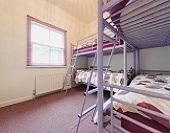 春の大セール。ドミ室£10~ 《ロンドン・アップルハウス》
