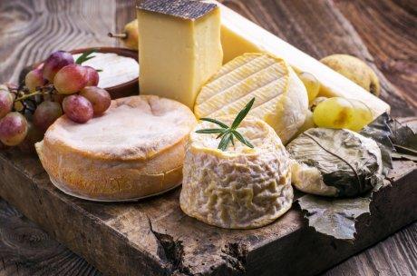チーズ講座基礎I