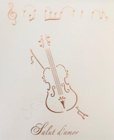 ヴァイオリンの出張演奏をいたします❀
