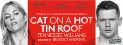 ~10/7★Cat on a Hot Tin Roof