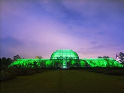 11/22~1/1★Christmas at Kew